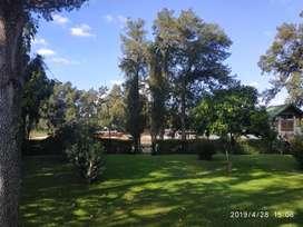 Alquilo Casa en Isla Tigre por dia