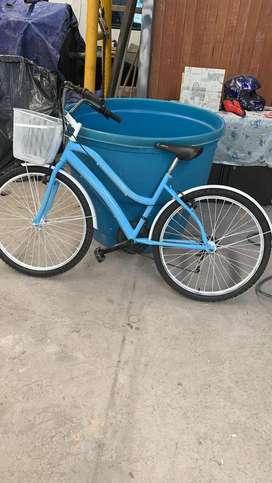 Bicicleta paseadora