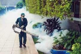 Fumigaciones Cúcuta, patios y villa del rosario