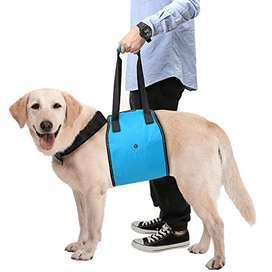 Faja Soporte para perro con discapacidad