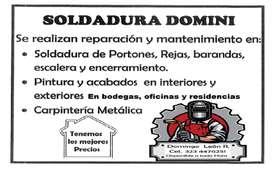SOLDADOR Y PINTOR PROFESIONAL