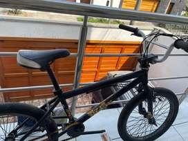 BMX oxford usada