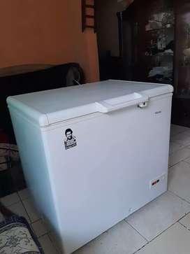 Fricer 300 litros