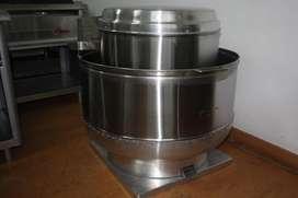 Hongo extractor