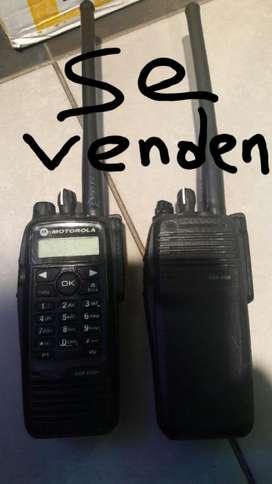 Radios Motorola Digitales