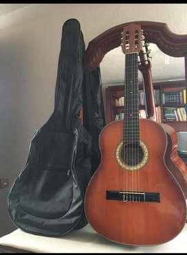 Guitarra con forro