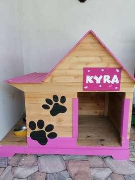 Hermosa casa para perro