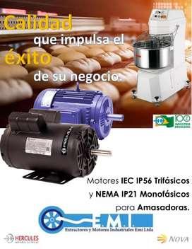 MOTORES eléctricos brasileros