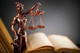 Materias de derecho