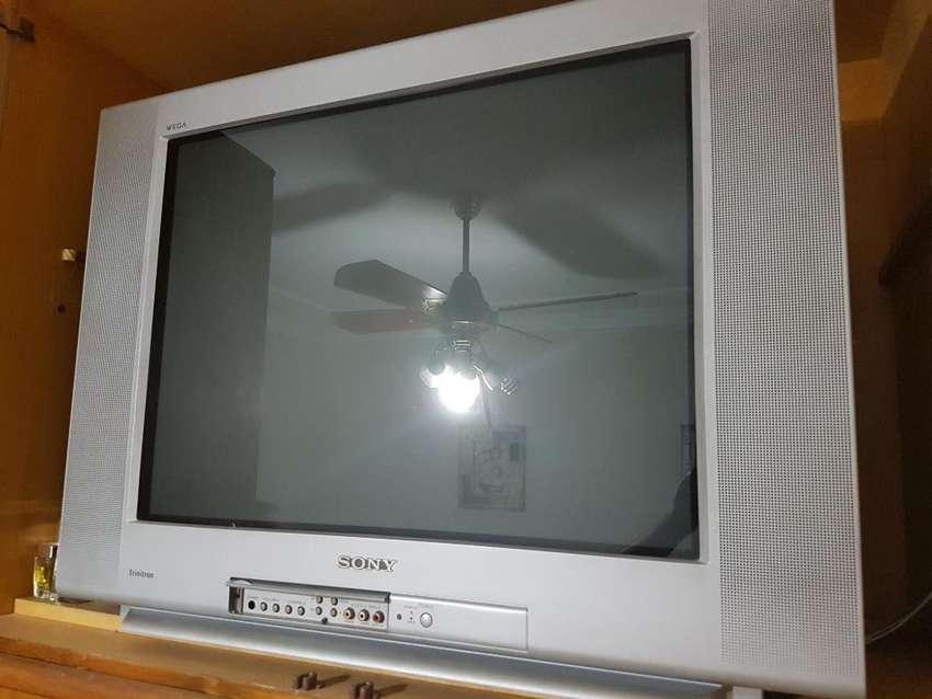 Tv Sony Pantalla Plana 29 0