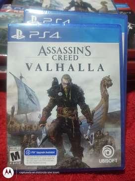 Assasins Valhalla