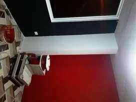 Maestro Pintor de casas