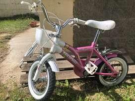 Bicicleta Autorita Rodado 12