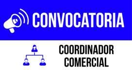 Coordinador Comercial - Portugués Avanzado
