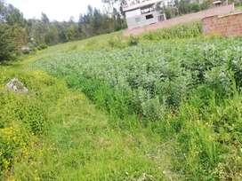 vendo terreno en cusco distrito de cachimayo provincia de anta