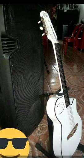 guitarra modelo godin