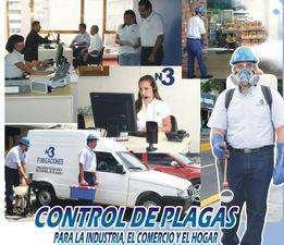 Fumigaciones especialistas empresa habilitada