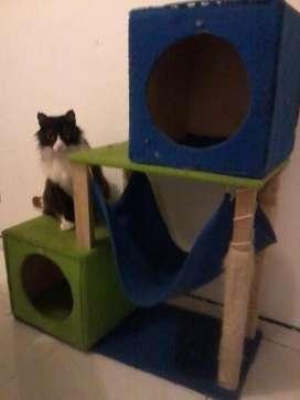 Gimnasios y muebles para gatos