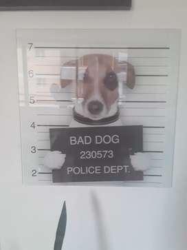 Cuadro de perro almazén Kare