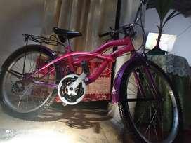Se vende bicicleta playera en buen estado