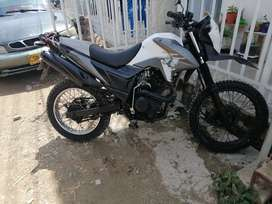 Tt 2014 cc. 125