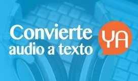 Audio a Texto