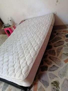 Nevera comedor cama