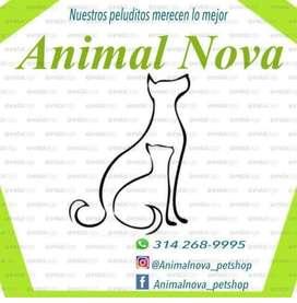 AnimalNova Pet shop