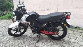 Vendo moto daytona panther 2019