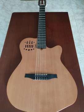 Guitarras de lujos