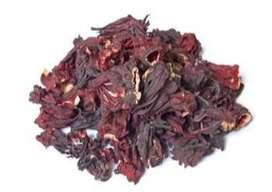 Flor de Jamaica propiedades infinitas calidad del campo sin quimicos