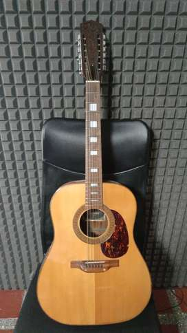 Guitarra de colección 12 cuerdas