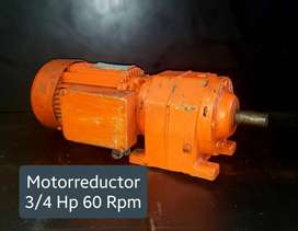 MOTORREDUCTOR 3/4 HP 60 RPM TRIFASE