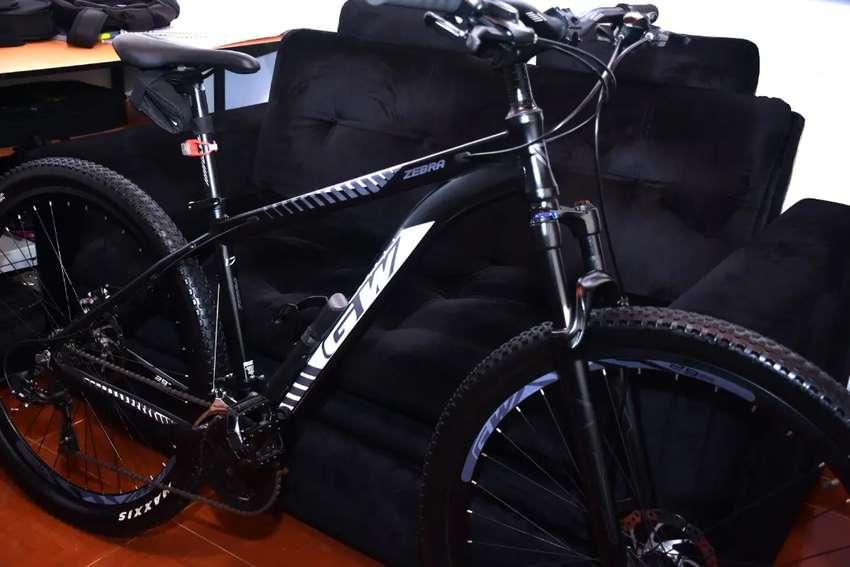 Bicicleta GW Zebra Rin 29