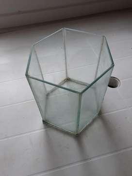 Pecera Chica Hexagolal