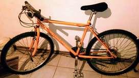 Bicicleta todo terreno,marca rally. rodado 26. 18 cambios, rueda delantera autodesmontable. 3 años de uso