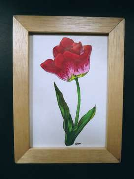 Serie de flores
