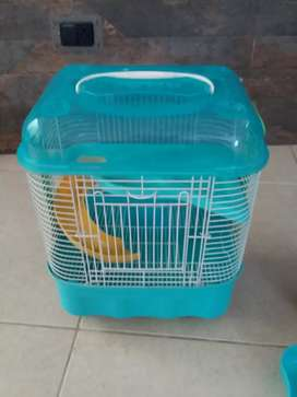 Jaula moderna para hamster