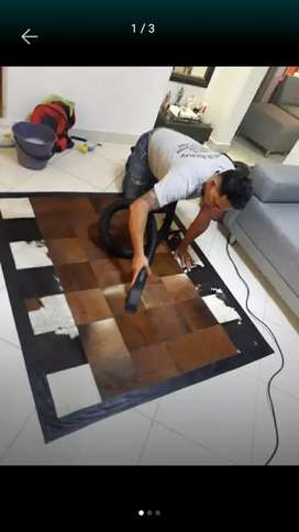 Lavado TAPETES colchones muebles