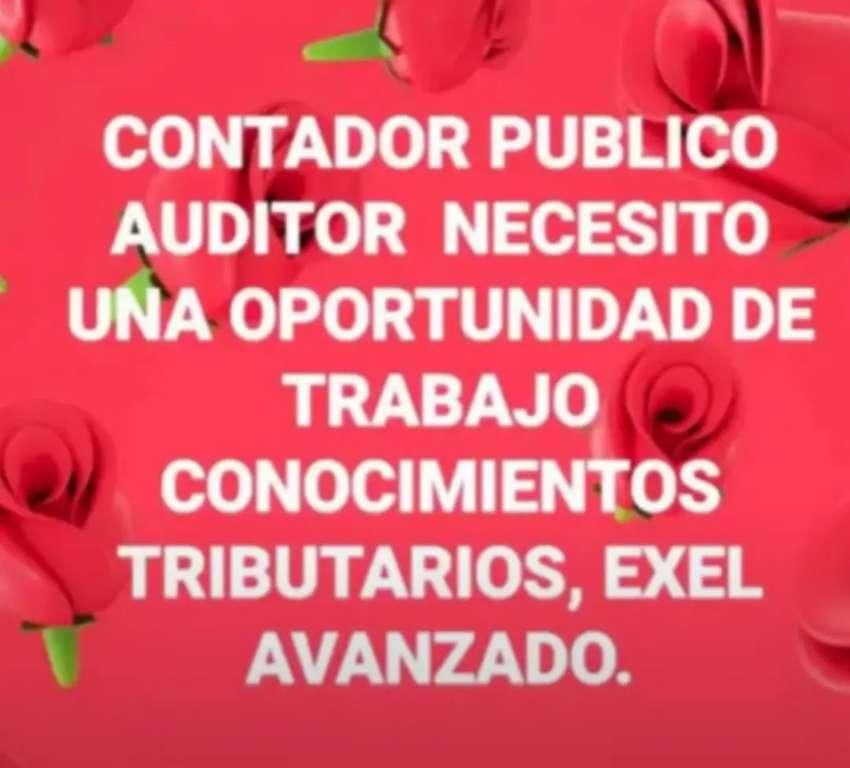 CONTADOR PUBLICO  AUDITOR
