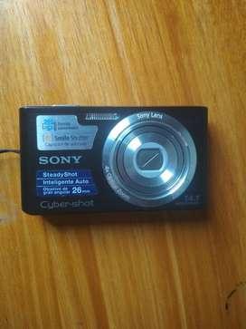 Sony Cybershot Dscw610 14.1mp