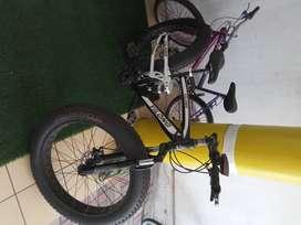 Vendo bicicletabic