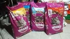 alimento balanceado para gatos