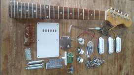 Mastil Y Electronica Para guitarra Stratocaster