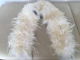 Chal de plumas de fiesta