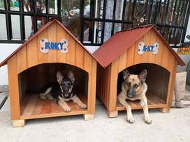 Casas para perros y gatos