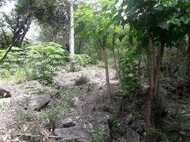 GRAN OPORTUNIDAD! Últimos lotes en Reserva Natural Villa Silvina