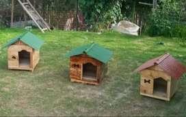 casitas para perritos.