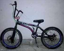 Bicicleta GW freno disco