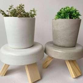 Maceta nórdica tamaño chico de concreto, maceta 8 x 9 cm | base 6 x 11 cm